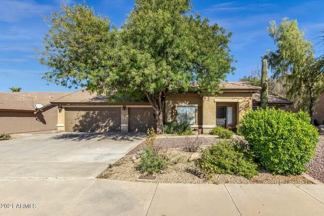 6518 E Omega Street, Mesa, AZ 85215 (#6305411) :: Long Realty Company