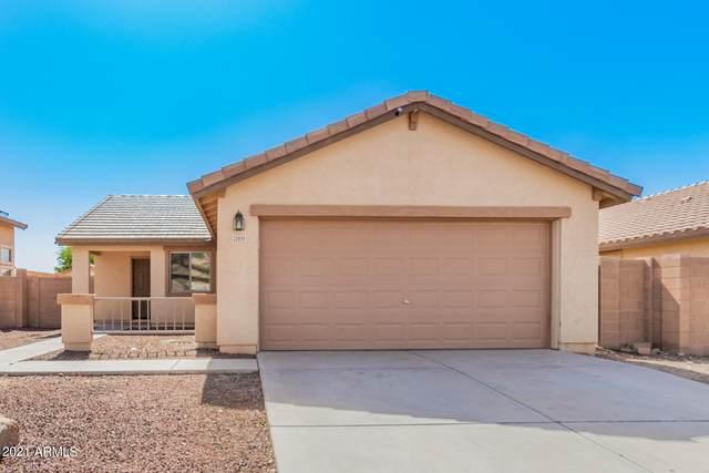 25699 W St Catherine Avenue, Buckeye, AZ 85326 (MLS #6305420) :: Fred Delgado Real Estate Group