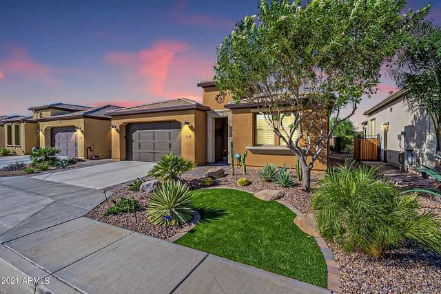 830 E Garden Basket Drive, Queen Creek, AZ 85140 (MLS #6305426) :: Klaus Team Real Estate Solutions