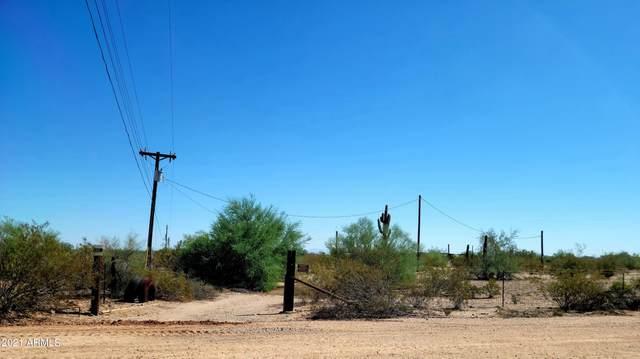 961 S Ortega Road, Maricopa, AZ 85138 (MLS #6305566) :: Fred Delgado Real Estate Group