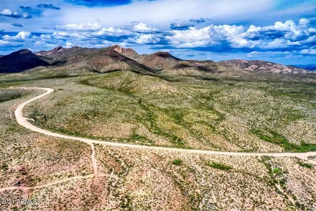 TBD 80Ac E Geronimo Trail, Douglas, AZ 85607 (MLS #6305579) :: The Copa Team | The Maricopa Real Estate Company