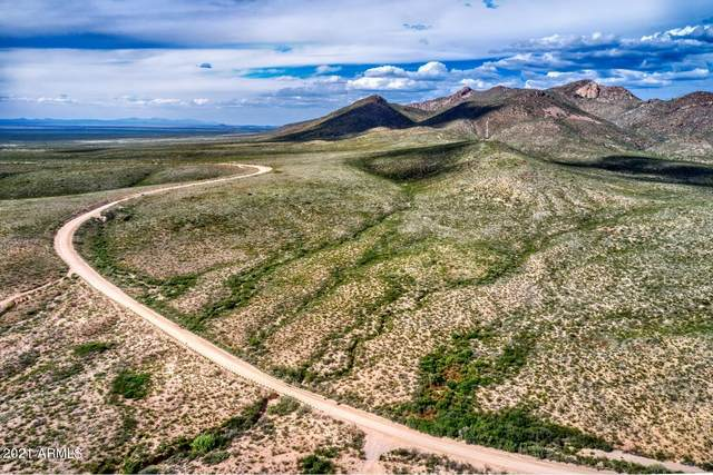 TBD E Geronimo Trail, Douglas, AZ 85607 (MLS #6305585) :: The Copa Team | The Maricopa Real Estate Company