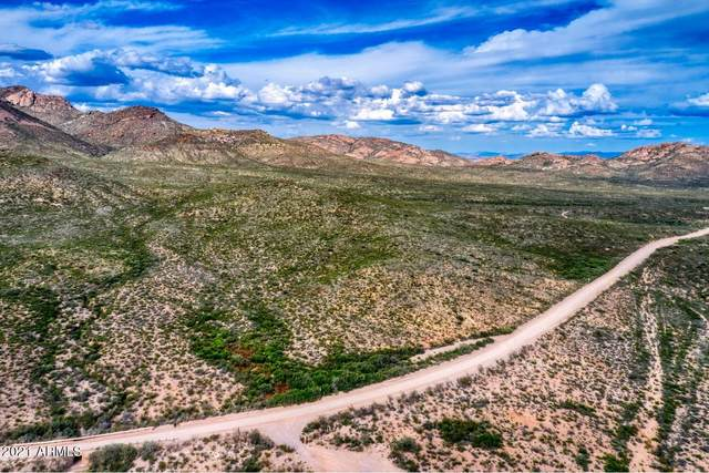 TBD E Geronimo Trail, Douglas, AZ 85607 (MLS #6305587) :: The Copa Team | The Maricopa Real Estate Company