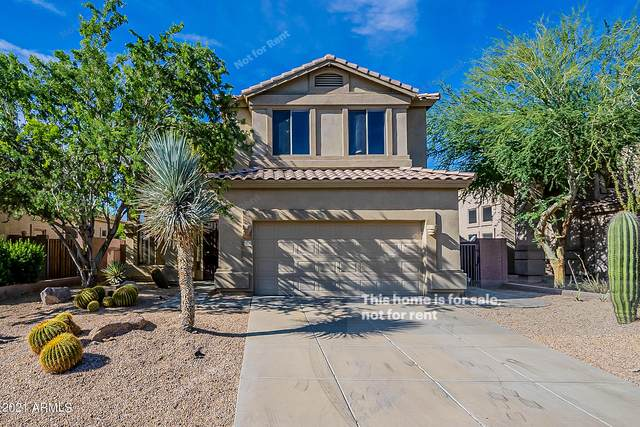3318 N Brighton, Mesa, AZ 85207 (MLS #6305613) :: Elite Home Advisors