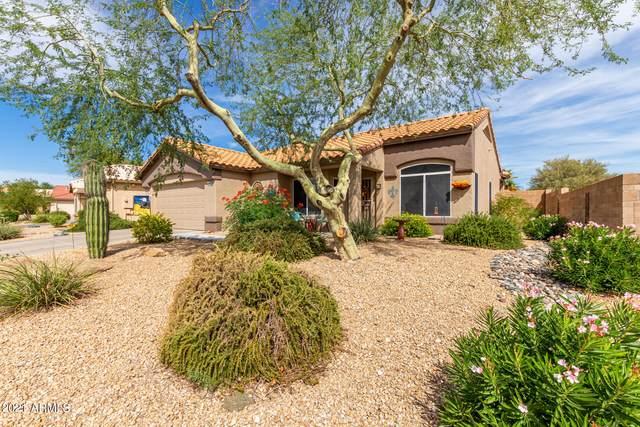 18835 N Spanish Garden Drive, Sun City West, AZ 85375 (MLS #6305659) :: The Riddle Group
