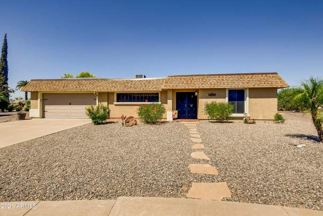 10320 W Charter Oak Drive, Sun City, AZ 85351 (MLS #6305660) :: Elite Home Advisors