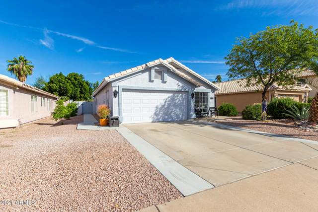 7146 E Juanita Avenue, Mesa, AZ 85209 (MLS #6305679) :: Kepple Real Estate Group