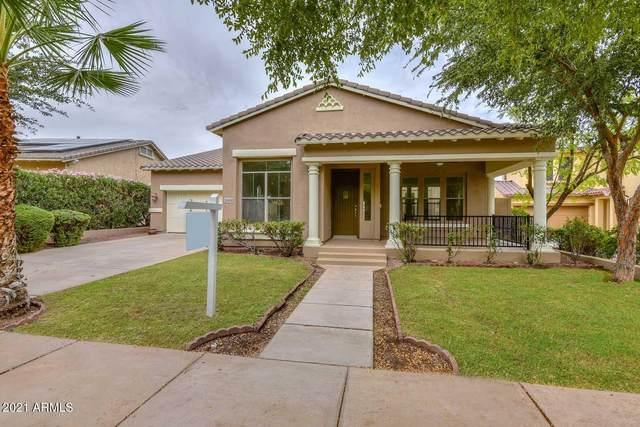 20430 W Springfield Street, Buckeye, AZ 85396 (#6305681) :: AZ Power Team