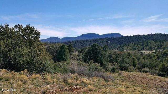 1076 D1 E Horseshoe Springs Road, Globe, AZ 85501 (MLS #6305712) :: Yost Realty Group at RE/MAX Casa Grande