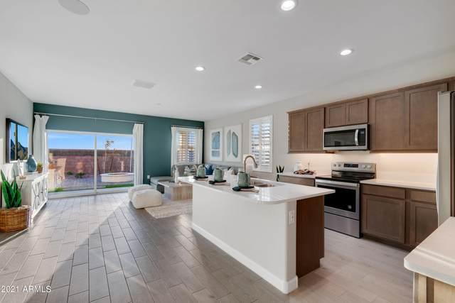 949 W Horro Drive, San Tan Valley, AZ 85143 (MLS #6305745) :: Elite Home Advisors