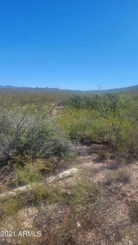 TBD W Randolph Way, Tombstone, AZ 85638 (MLS #6305757) :: Elite Home Advisors