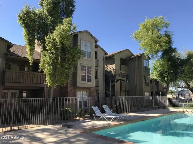 200 E Southern Avenue #348, Tempe, AZ 85282 (MLS #6305782) :: Yost Realty Group at RE/MAX Casa Grande