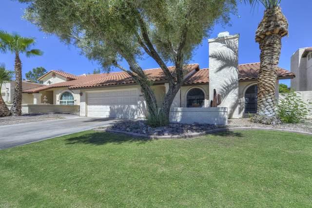 440 E Susan Lane, Tempe, AZ 85281 (MLS #6305784) :: Zolin Group