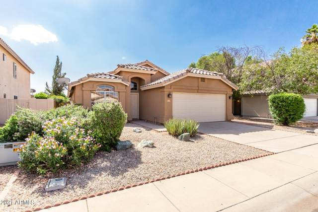 923 E Constitution Drive, Chandler, AZ 85225 (MLS #6305857) :: Yost Realty Group at RE/MAX Casa Grande