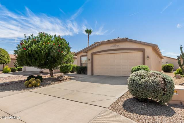 3373 E Cherry Hills Place, Chandler, AZ 85249 (MLS #6305862) :: Yost Realty Group at RE/MAX Casa Grande