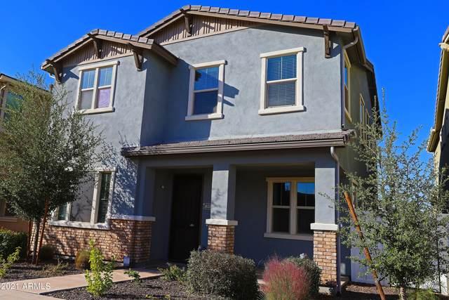 3853 E Stiles Lane, Gilbert, AZ 85295 (MLS #6305874) :: Morton Team | A.Z. & Associates