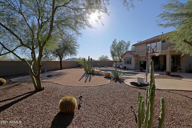 39517 N Noble Hawk Court, Phoenix, AZ 85086 (MLS #6305958) :: The Luna Team