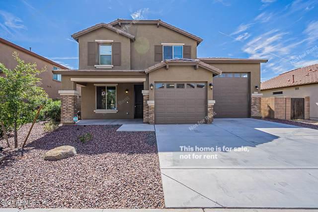 1223 W Park Street, Phoenix, AZ 85041 (MLS #6305996) :: Yost Realty Group at RE/MAX Casa Grande
