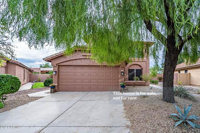21608 N 48TH Street, Phoenix, AZ 85054 (MLS #6306000) :: RE/MAX Desert Showcase