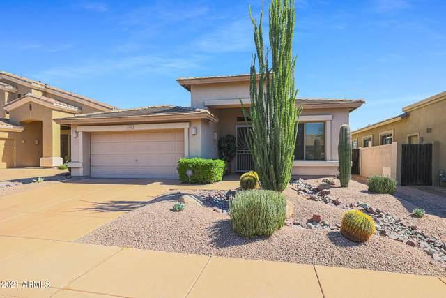 22207 N 51ST Street, Phoenix, AZ 85054 (MLS #6306006) :: RE/MAX Desert Showcase
