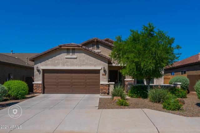 26924 N 17TH Avenue, Phoenix, AZ 85085 (MLS #6306007) :: Elite Home Advisors