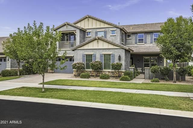 4282 E Morrison Ranch Parkway, Gilbert, AZ 85296 (MLS #6306026) :: Zolin Group