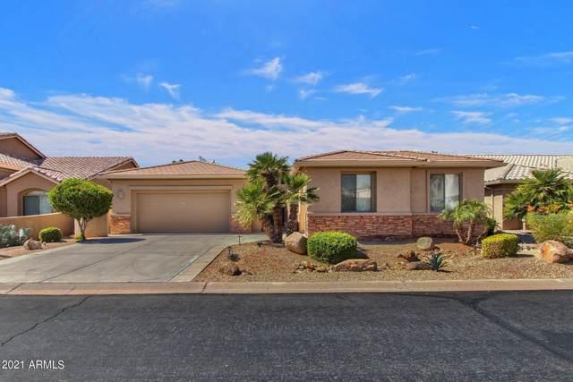 24316 S Lakeway Circle, Sun Lakes, AZ 85248 (MLS #6306033) :: Midland Real Estate Alliance