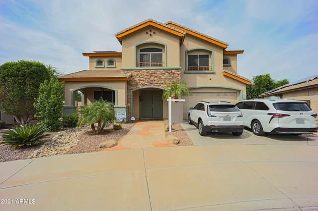 12626 W Alegre Drive, Litchfield Park, AZ 85340 (MLS #6306041) :: The Riddle Group