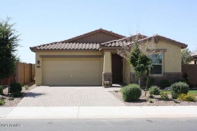 1055 E Blue Spruce Lane, Gilbert, AZ 85298 (MLS #6306066) :: Elite Home Advisors
