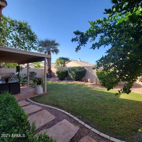 2082 E Palomino Drive, Gilbert, AZ 85296 (MLS #6306075) :: Yost Realty Group at RE/MAX Casa Grande