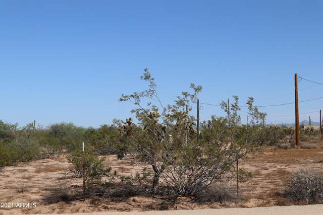 8285 N Dolores Road, Florence, AZ 85132 (MLS #6306086) :: The Property Partners at eXp Realty