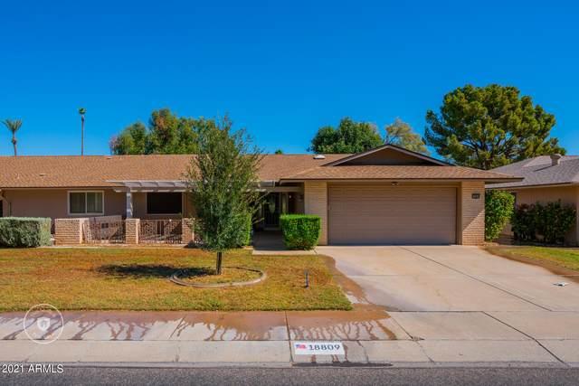 18809 N Conestoga Drive, Sun City, AZ 85373 (MLS #6306098) :: Yost Realty Group at RE/MAX Casa Grande