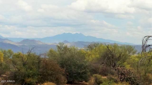 16444 E Dixileta Drive, Scottsdale, AZ 85262 (MLS #6306116) :: The Daniel Montez Real Estate Group