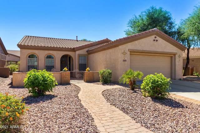 4495 E Donato Drive, Gilbert, AZ 85298 (MLS #6306149) :: Klaus Team Real Estate Solutions