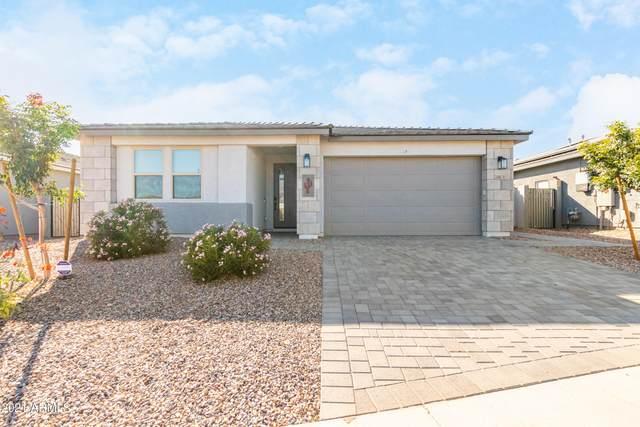 28878 N 132ND Lane, Peoria, AZ 85383 (MLS #6306164) :: Dave Fernandez Team | HomeSmart