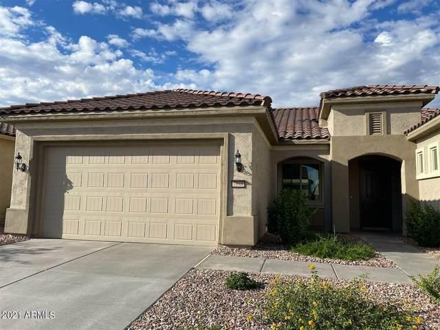 7738 W Willow Way, Florence, AZ 85132 (MLS #6306191) :: The Laughton Team