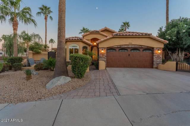 3335 E Brookwood Court, Phoenix, AZ 85048 (MLS #6306210) :: Yost Realty Group at RE/MAX Casa Grande