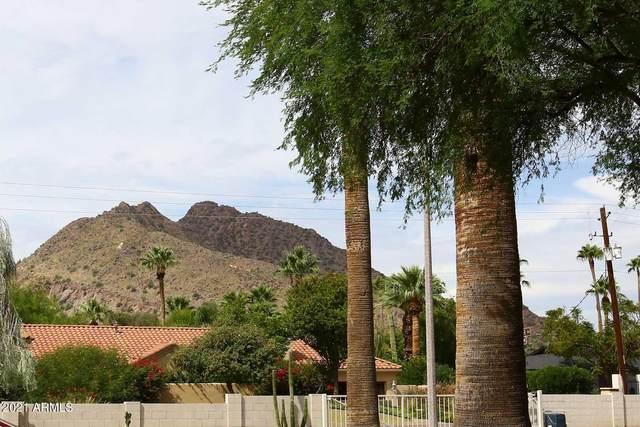 4800 N 68TH Street #319, Scottsdale, AZ 85251 (MLS #6306230) :: The Dobbins Team