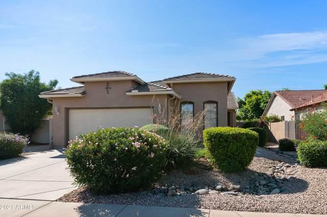 3461 E Turnberry Drive, Gilbert, AZ 85298 (MLS #6306273) :: Elite Home Advisors