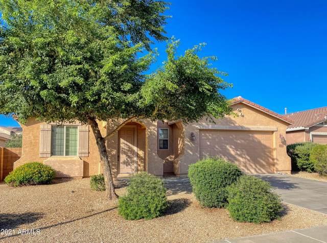 9182 W Black Hill Road, Peoria, AZ 85383 (MLS #6306352) :: Yost Realty Group at RE/MAX Casa Grande