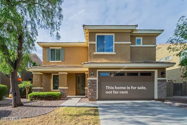 4480 E Maplewood Street, Gilbert, AZ 85297 (MLS #6306376) :: Elite Home Advisors
