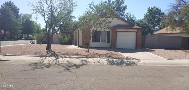 3260 N Ash Circle, Chandler, AZ 85224 (MLS #6306380) :: Dave Fernandez Team   HomeSmart