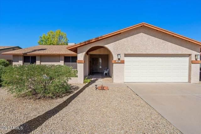 10910 E Sahuaro Drive, Scottsdale, AZ 85259 (MLS #6306436) :: The Garcia Group