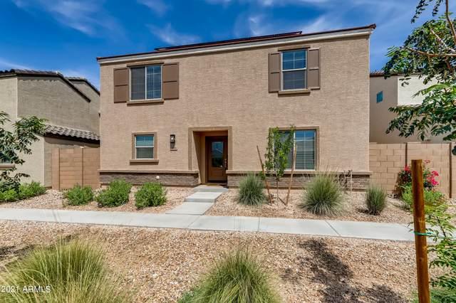 3938 S 79TH Drive, Phoenix, AZ 85043 (MLS #6306444) :: Yost Realty Group at RE/MAX Casa Grande