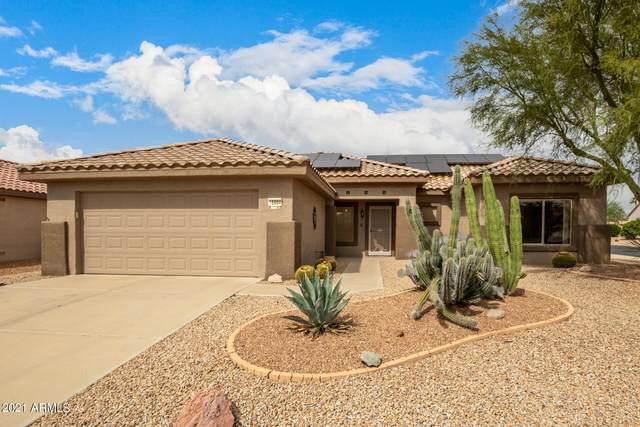 15904 W La Paloma Drive, Surprise, AZ 85374 (MLS #6306459) :: Elite Home Advisors