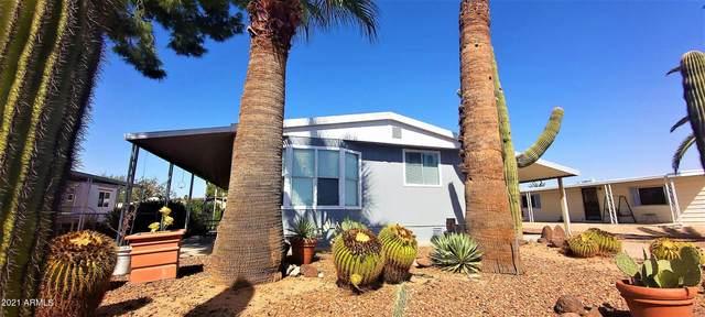 1526 E Muriel Drive, Phoenix, AZ 85022 (MLS #6306504) :: D & R Realty LLC