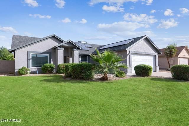 3612 W Elgin Street, Chandler, AZ 85226 (MLS #6306505) :: Dijkstra & Co.