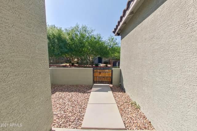 1744 W Minton Street, Phoenix, AZ 85041 (MLS #6306533) :: Elite Home Advisors