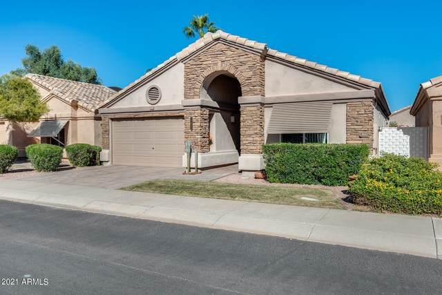 17083 N Winding Trail, Surprise, AZ 85374 (MLS #6306561) :: Fred Delgado Real Estate Group