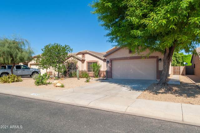 16342 W Ironwood Street, Surprise, AZ 85388 (MLS #6306574) :: Yost Realty Group at RE/MAX Casa Grande